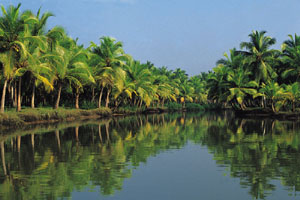 www.ayurveda-india.it:  backwaters - pozhiyoor